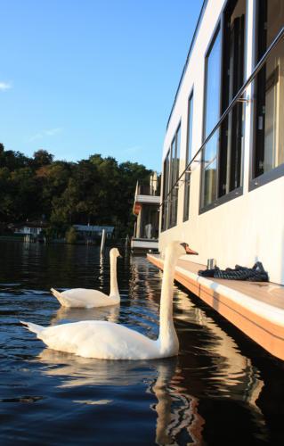 white das hausboot und die marina 141 ein ganz. Black Bedroom Furniture Sets. Home Design Ideas